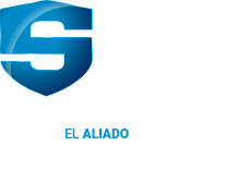 Ebook Sentry